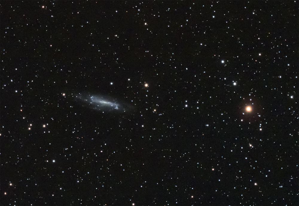 NGC4236v2.jpg